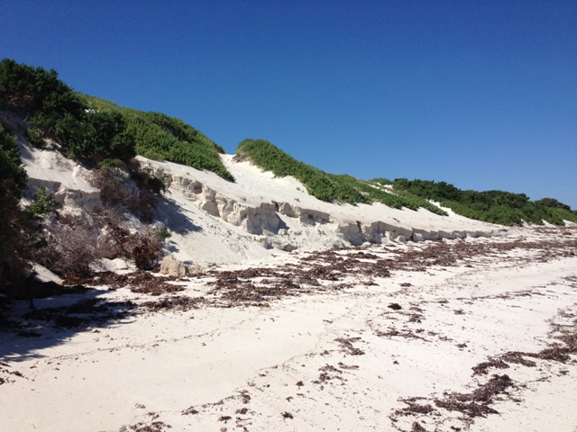 Fabulous dunes at Point Louise