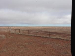 The Dingo Fence