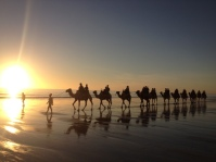 Sunset Camel ride, Broome, WA