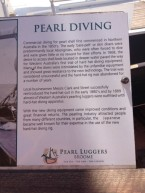 Pearl Diving