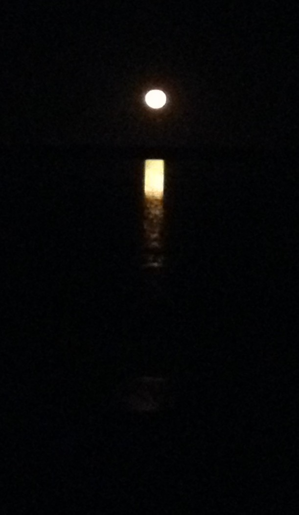Staircase to the Moon, Hearson's Cove, Western Australia 2015