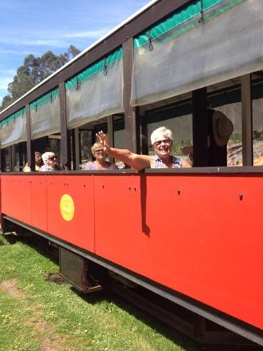 Pemberton Tramway WA