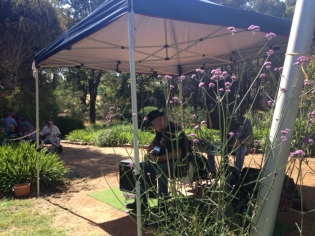 Blues at the Cidery, Bridgetown, Western Australia