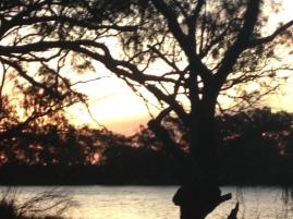 Abbotsford Bend, Murray River Victoria