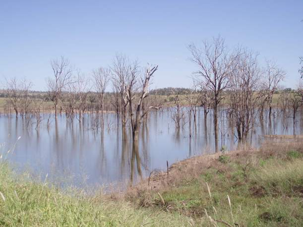 Bin Bin Creek, Queensland