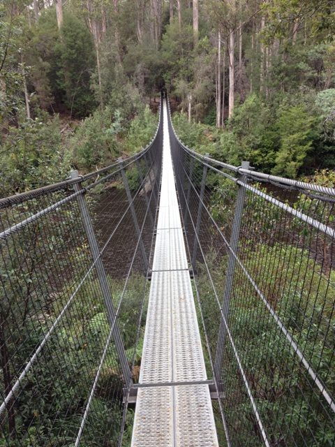 Tahune Air Walk, Tasmania