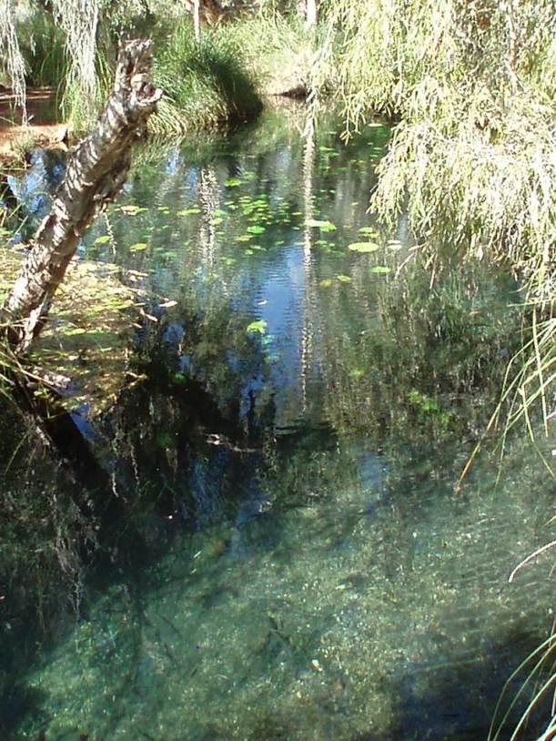 Millstream Chichester National Park, Western Australia
