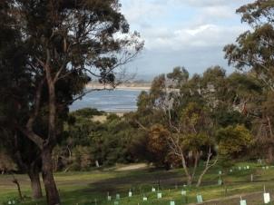 Bridport, Tasmania
