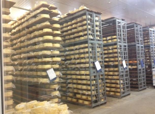 Asgrove Cheeses, Elizabeth Town, Tasmania