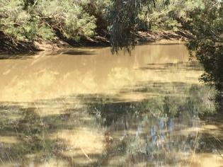 Barcoo River, Isisford
