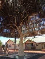 Tree of Knowledge, Barcaldine, Queensland