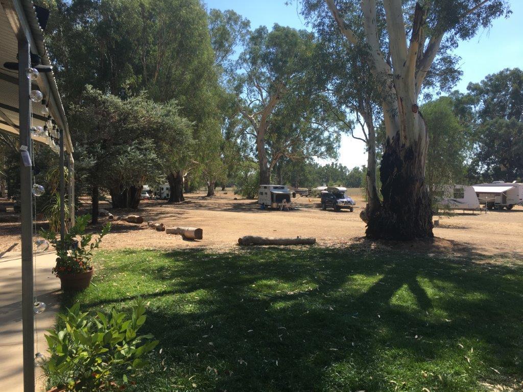Camp ground at Broken Creek Bush Camp